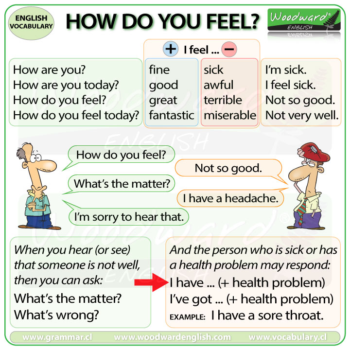 http://www.vocabulary.cl/pictures/how-do-you-feel-english.jpg